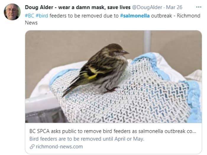 Salmonella Wild Birds CDC