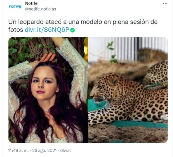 Leopard attacks model: The model is an activist for animal rights