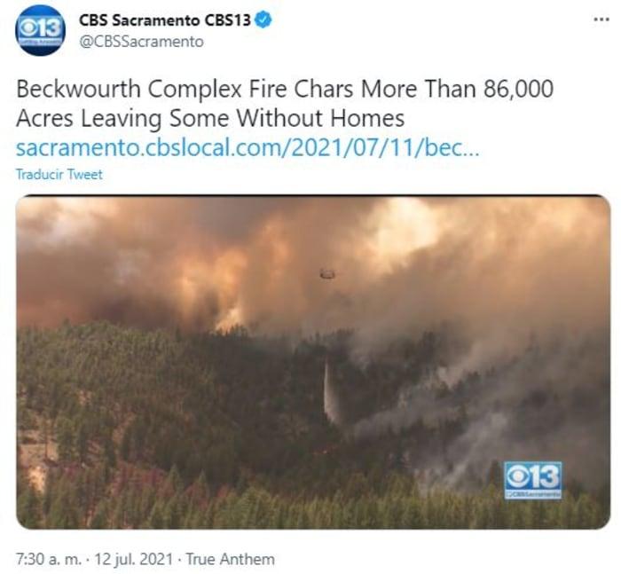 El fuego arrasa bosques