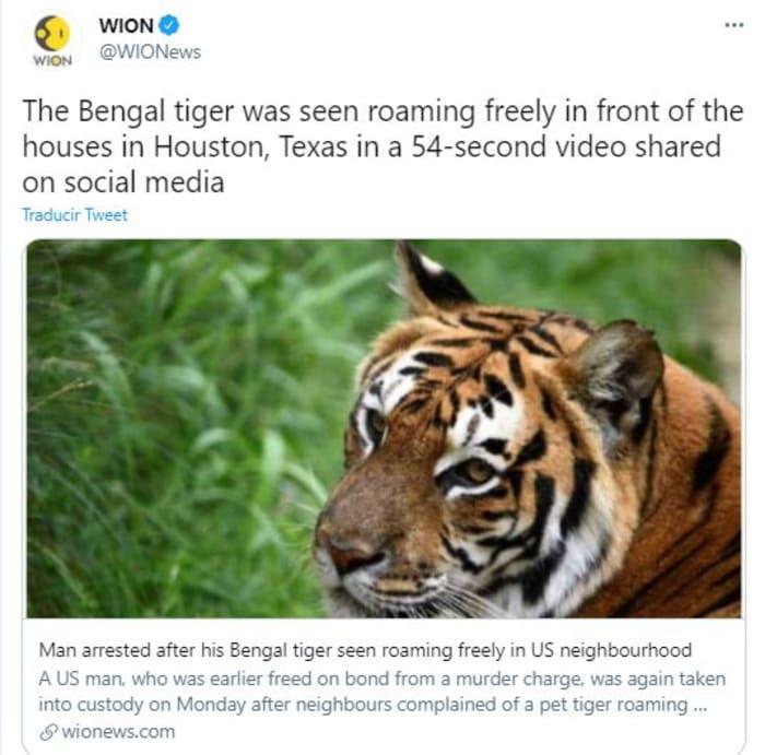 dueño de tigre en Houston
