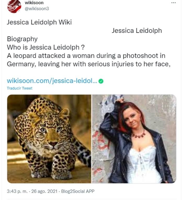 Leopard Attacks Model