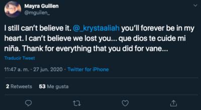 hermana Vanessa Guillén muerte