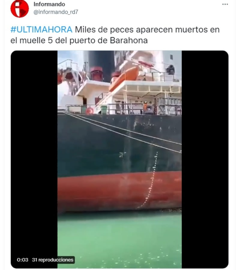 Peces aparecen muertos costa: Embarcación sospechosa