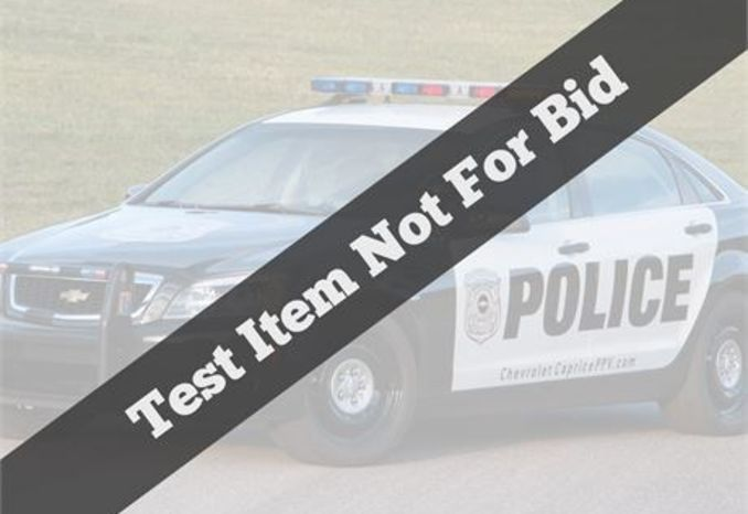 Test item - Not available for bidding