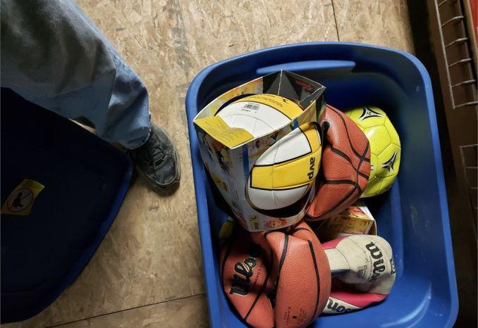 Bin of Balls