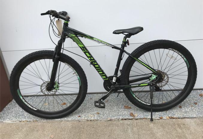 Bicycle, Schwinn