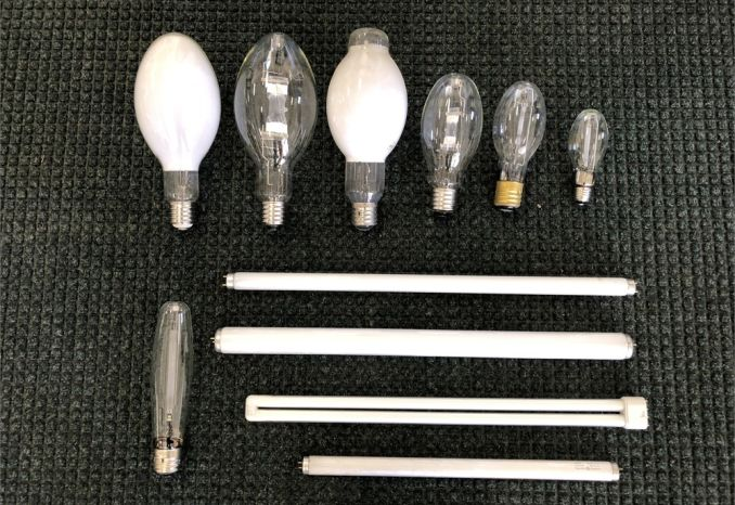 Assorted Light Bulbs