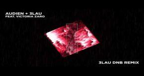 Image of Audien & 3LAU - Hot Water feat. Victoria Zaro (3LAU DnB Remix)