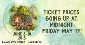 Image of Enchanted Forest Gathering is Less Than a Month Away!