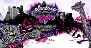 Image of Electric Zoo 2017 Tickets Go Up in Price June 1st!
