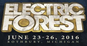 Image of Electric Forest 2016