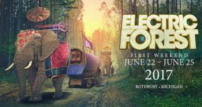 Image of Electric Forest 2017 Weekend 1