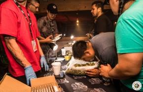 Image of The Stoned Gamer Championship 2017