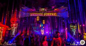 Image of Electric Forest 2016 - Rothbury, MI