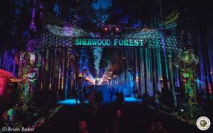 Image of Electric Forest 2017 - Rothbury, MI - Weekend 2 - Round 2