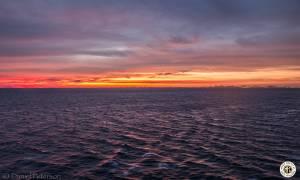 Image of Jam Cruise 16 - Roatan, Honduras - Grand Cayman Island - Round 1