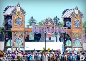 Image of Electric Forest 2019 - Rothbury, MI - Round 1