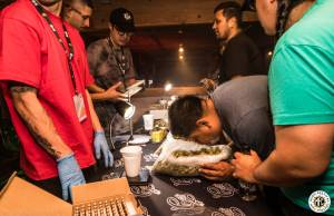 Image of The Stoned Gamer Championship 2017 - Los Angeles - 12/9/17