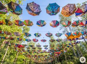 Image of Electric Forest 2017 - Rothbury, MI - Weekend 1 - Round 1