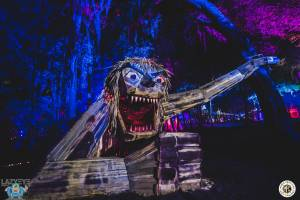 Image of Flashbay Friday Album : Suwannee Hulaween 2016