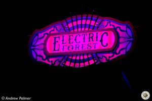 Image of Electric Forest 2019 - Rothbury, MI - Round 2