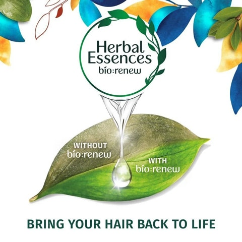 Bring your hair back to life