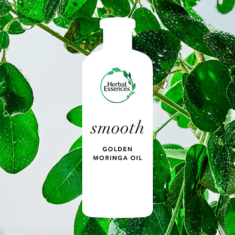 Herbal Essences Golden Moringa Oil: smooth