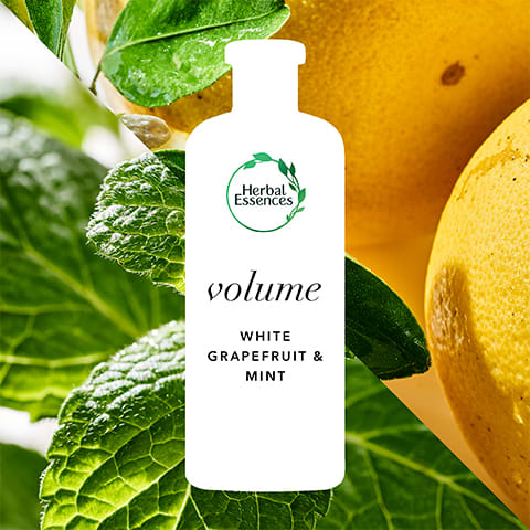 Herbal Essences White Grapefruit + Mint: volume