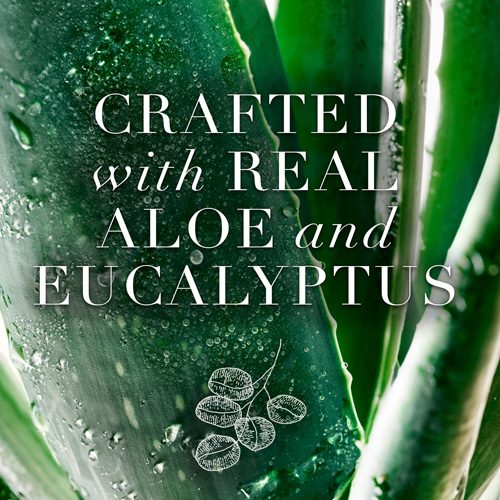 Crafted with Real Aloe and Eucalyptus