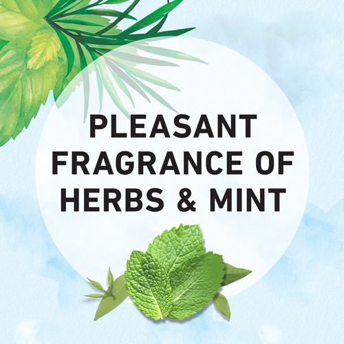 Pleasant Fragrance of Herbs & Mint