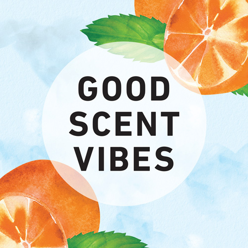 Good Scent Vibes