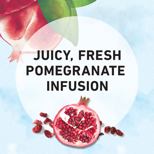 Juicy, Fresh Pomegranate Infusion