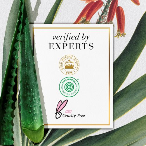 Verified by Experts