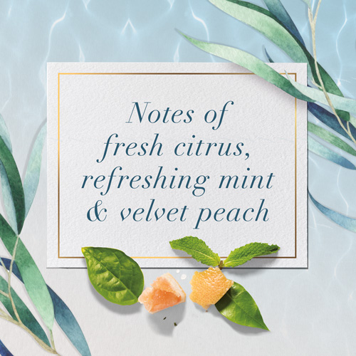 Notes of fresh citrus, refreshing mint & velvet peach