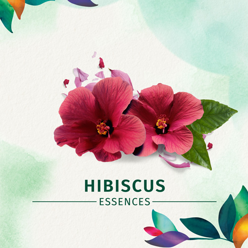Hibiscus Essences