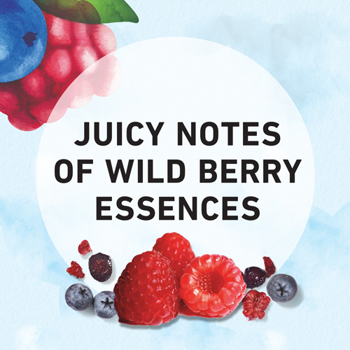 Juicy notes of wild berry essences