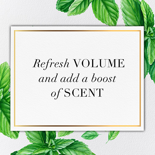 Refresh volume and add a boost of scent