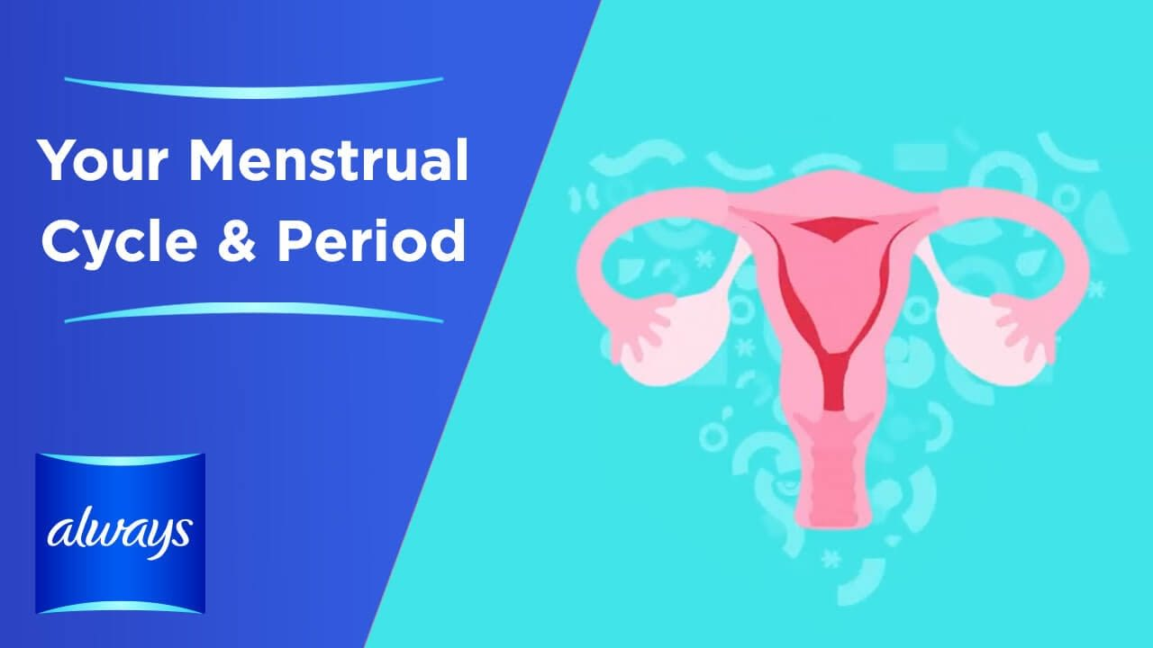 Watch Your Menstrual Cycle & Periods