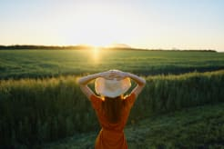 Woman photographed from behind looking at a sunset in a field