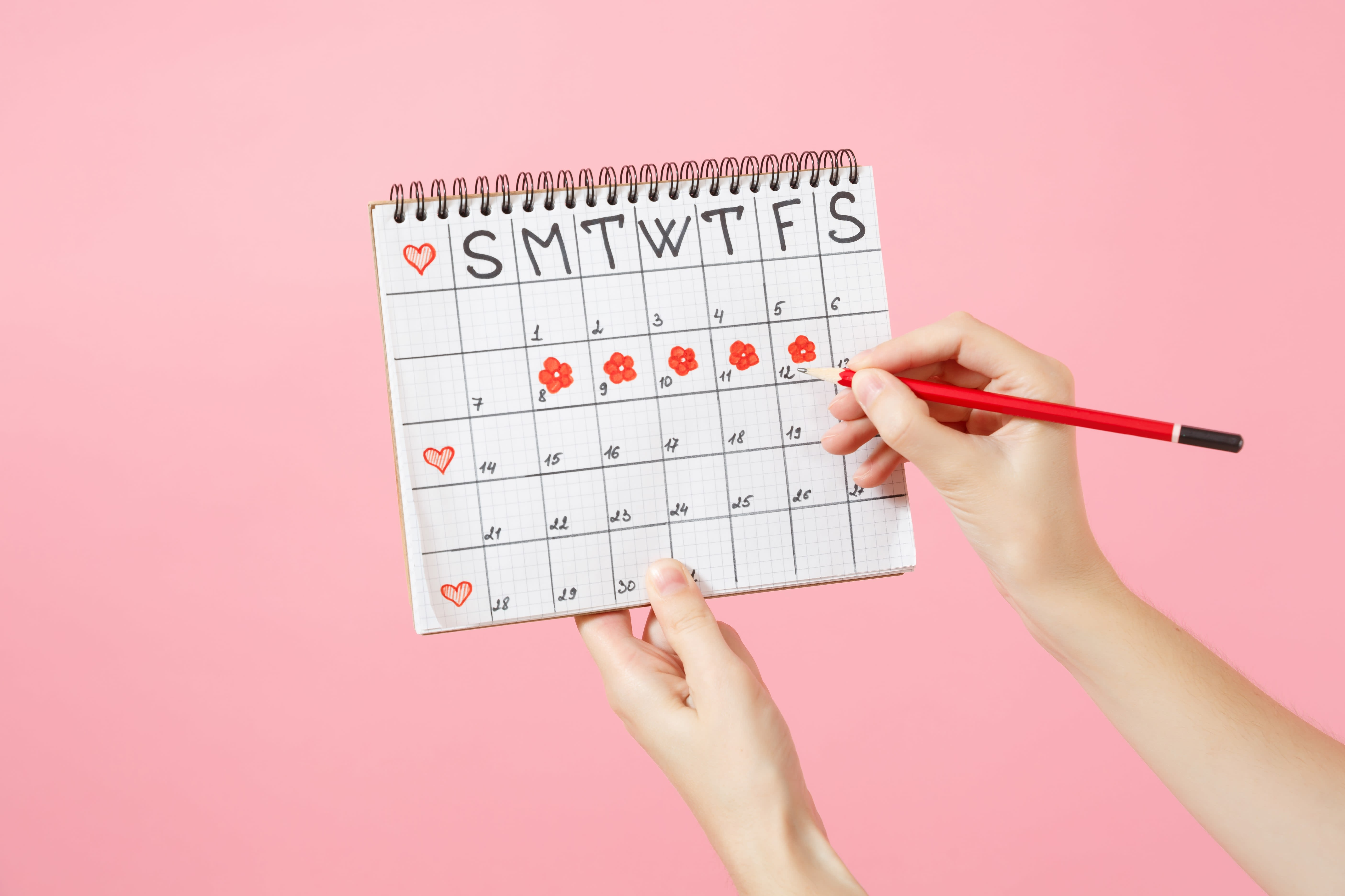 Drawing of a calendar in a notebook shown against a pink background