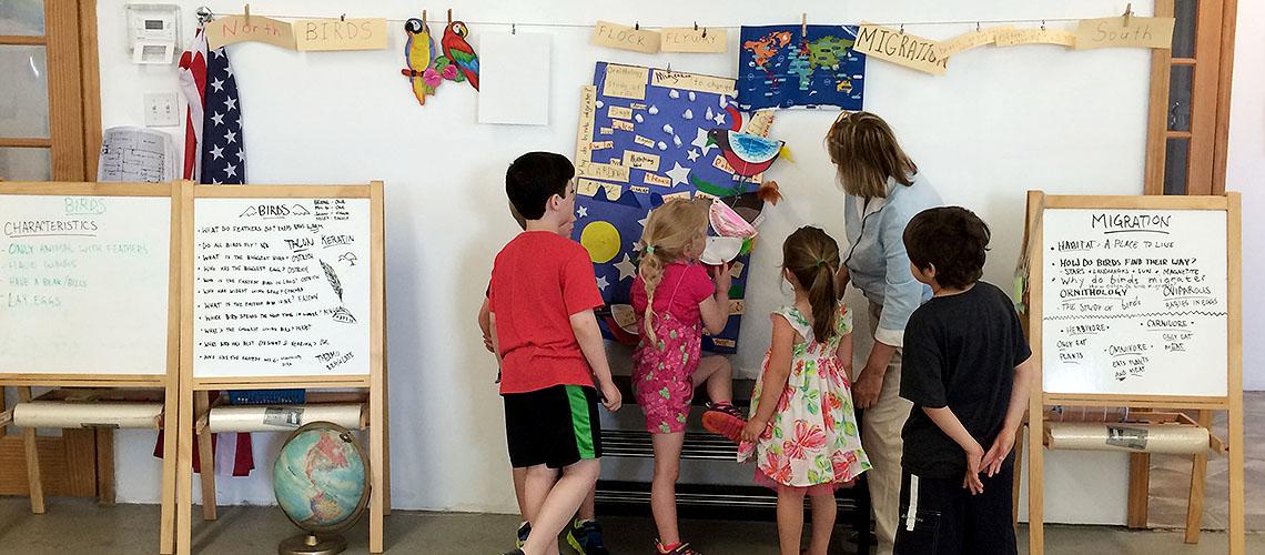 My Spectrum School Lesson On Bird Migration