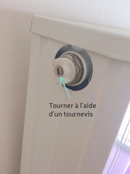 Purgeur radiateur