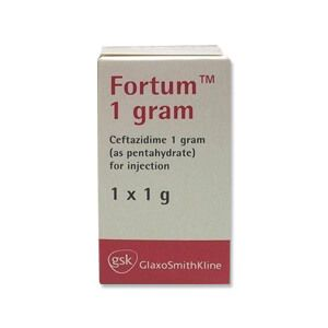 Fortum 2gm Injection