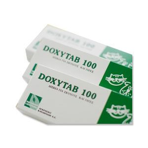 Doxytab 100mg Tablet