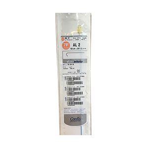 Guiding Catheters AL 2 (778-040-00)