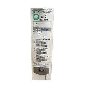 Guiding Catheters AL 2 (670-040-00)