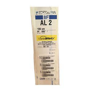 Guiding Catheters AL 2(588-844)