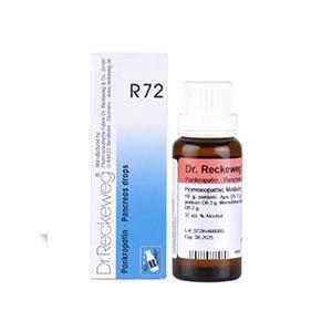 Dr. Reckeweg R72 Pancreas Drop