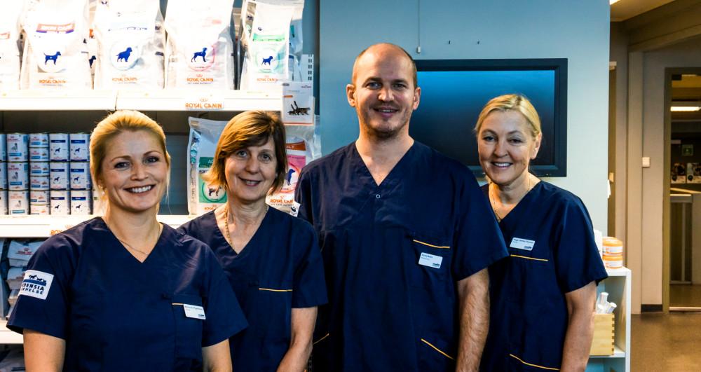 Dette er noen av de mange dyktige veterinærene ved Evidensia Bærum Dyrehospital