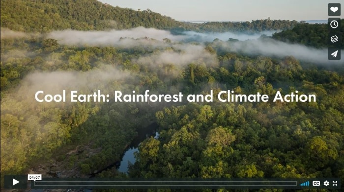 Cool Earth - Rainforest and Climate action